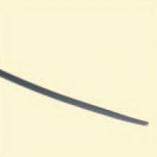 Biliary Dilatation Catheter